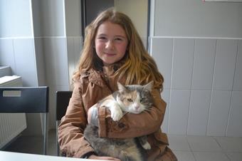 Consultation chat, clinique vétérinaire Cristal Vet