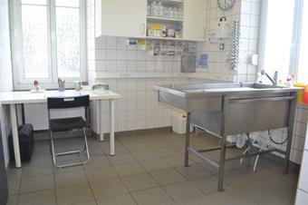 Salle de préparation, clinique vétérinaire Cristal Vet