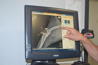 Radiographie vétérinaire à Baccarat